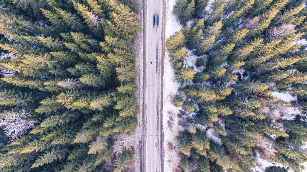 Bil i skog uppifrån